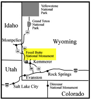 Fossil Butte area map