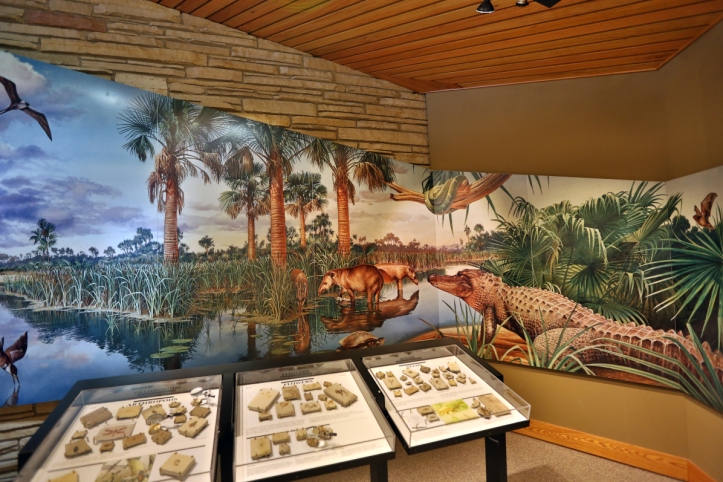 Fossil Butte exhibit