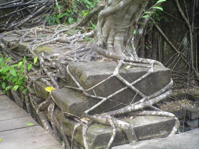 2007 Cambodia Siem Riep Boeng Mealea temple 50.jpg