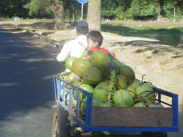 2007 Cambodia Siem Riep street scene 08.jpg
