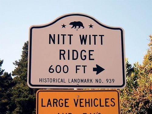 Nitt Witt Ridge CA